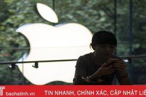 Người dùng Trung Quốc kêu gọi tẩy chay sản phẩm của Apple sau khi Mỹ 'cấm cửa' Huawei