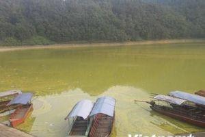 'Viên ngọc xanh' phía sườn Tây Tam Đảo ô nhiễm nặng, bốc mùi tanh nồng
