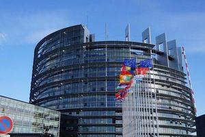 Tranh cãi về ý tưởng chuyển trụ sở EP ở Strasbourg về Brussels