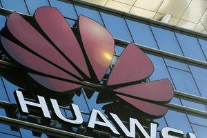 Google ngừng hỗ trợ Huawei sau lệnh cấm của chính phủ Mỹ