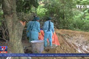 Lào Cai khẩn cấp phòng chống dịch tả lợn Châu phi