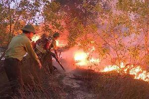 Quảng Bình: Hỏa hoạn thiêu rụi hơn 15ha rừng phòng hộ ven biển