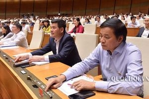 Quốc hội nghe kết quả giải quyết kiến nghị của cử tri từ phiên khai mạc
