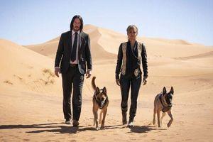 Ra mắt thành công, 'John Wick 3' vượt mặt 'Avenger: Endgame'
