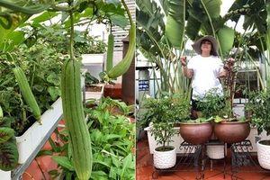 Sân thượng 120m2 không cần mái che vẫn đủ loại rau trái của bà mẹ 5 con
