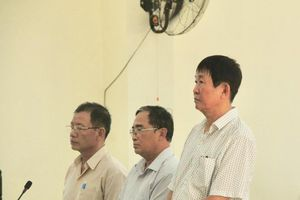 Bình Dương: Gây thiệt hại 131 tỷ đồng, nguyên Giám đốc Sở địa chính lĩnh 12 năm tù