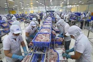 Kinh tế Việt Nam - những kết quả khích lệ