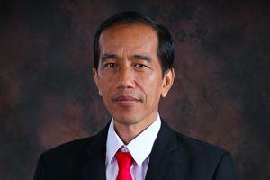 Lãnh đạo Đảng, Nhà nước gửi điện mừng Tổng thống Indonesia