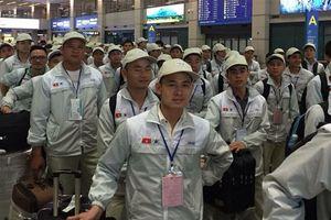 Cảnh báo lao động Việt Nam mang các sản phẩm từ thịt lợn sang Hàn Quốc