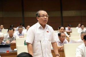 Đại biểu Quốc hội chia sẻ giải pháp đối với nông sản Việt