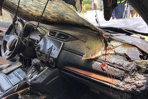 3 vụ cháy xe thiệt hại bạc tỷ: Cảnh báo quan trọng từ kỹ sư ô tô