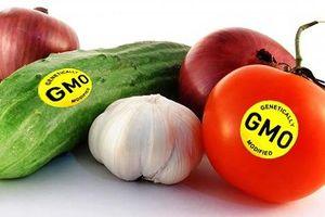 Thực phẩm biến đổi gen có ảnh hưởng đến sức khỏe?