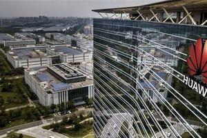 Mỹ nới 'xích' cho Huawei sau cú đánh của Google