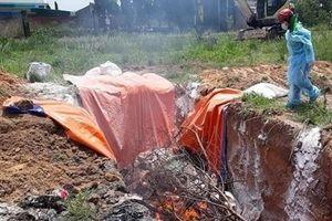 Tập trung mọi nguồn lực để phòng chống dịch tả lợn châu Phi