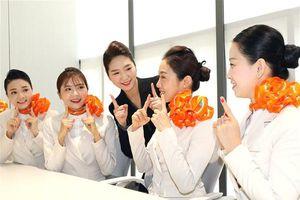 Khách Việt tăng cao, Jeju Air tuyển tiếp viên Việt Nam phục vụ