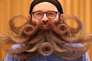 Phì cười những bộ râu quái dị nhất hành tinh năm 2019