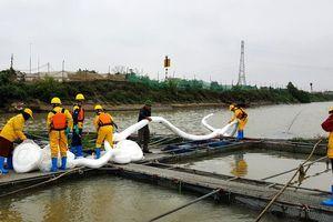 Để dầu tràn sông Kinh Thầy, công ty Tuấn Phong bị phạt 160 triệu đồng