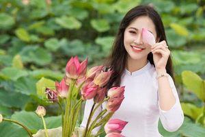 Hoa khôi Imiss Thăng Long đằm thắm giữa hồ sen đầu mùa