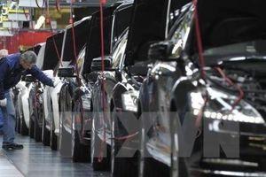 Xuất khẩu của Nhật Bản chịu tác động mạnh từ căng thẳng Mỹ - Trung