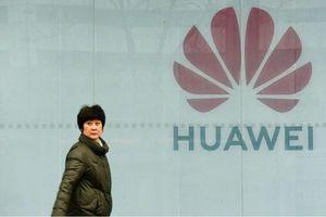 Lý do đằng sau việc Mỹ 'nhượng bộ' Huawei?