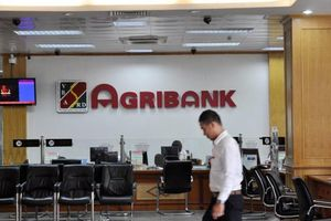 Agribank cổ phần hóa chậm, 5/6 công ty con thua lỗ