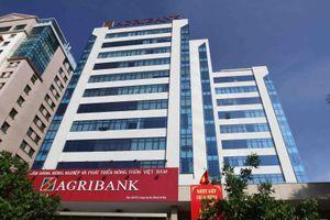 Chi gần 2.400 tỷ đầu tư, 5/6 công ty con của Agribank lỗ đậm