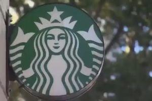 Starbucks tại New York bị cáo buộc liên quan tới thuốc trừ sâu