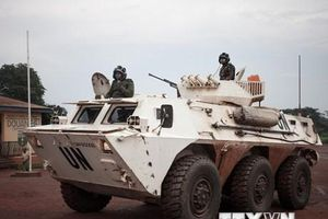 Gần 30 người thiệt mạng trong vụ thảm sát tại Cộng hòa Trung Phi