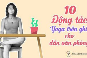10 động tác yoga trên ghế cực tốt cho dân văn phòng