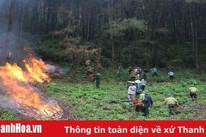 Hà Trung tăng cường công tác phòng cháy chữa cháy rừng mùa nắng nóng
