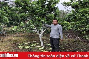 Phát huy vai trò lãnh đạo của Đảng trong xây dựng nông thôn mới ở xã Trường Minh