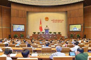 Quốc hội nghe Tờ trình Dự án Luật Thư viện