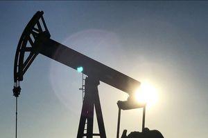 Thổ Nhĩ Kỳ đã dừng mua dầu của Iran theo yêu cầu của Mỹ