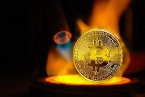 Giá Bitcoin hôm nay 23/5: Thị trường tiền ảo chìm trong sắc đỏ