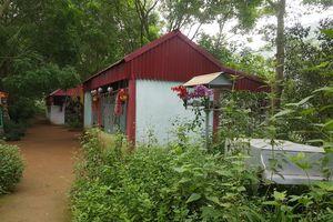 Thanh Hóa: Xây dựng, khai thác dịch vụ trái phép tại danh thắng quốc gia hồ Đồng Vụa