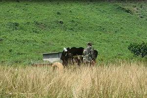 Việt Nam lần đầu tiên chế tạo thành công đạn chống tăng
