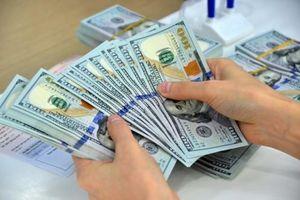 Căng thẳng tỷ giá ngoại tệ 'đè' nặng doanh nghiệp xuất khẩu