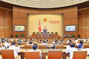 Quốc hội nghe báo cáo giải trình, tiếp thu, chỉnh lý dự án Luật Quản lý thuế (sửa đổi)