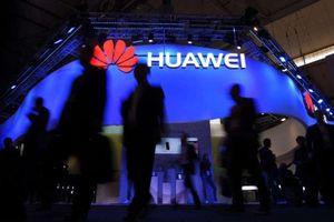 Thiếu Android và Windows, Huawei như cá thiếu nước