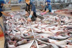 Trung Quốc tiếp tục là thị trường xuất khẩu lớn nhất của cá tra Việt Nam