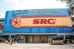 Thoái vốn nhà nước tại Cao su Sao Vàng bị nghi ngờ tư lợi