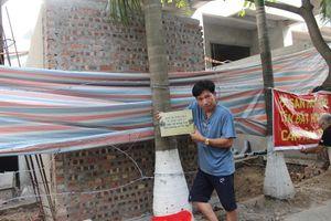 Cư dân chung cư 54 Hạ Đình phản đối chủ đầu tư chặt cây, lấn đất