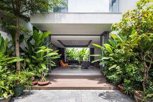Nhà phố 3 tầng như rừng nhiệt đới giữa Sài thành