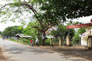 Người dân kêu cứu vì trang trại lợn gà bủa vây khu dân cư