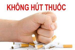 Kiểm tra việc thực hiện Luật Phòng, chống tác hại thuốc lá