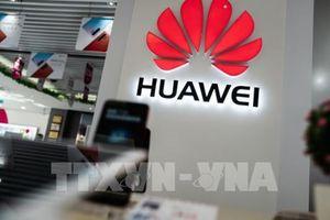 Điện thoại thông minh Huawei có thể 'biến mất' khỏi các thị trường thế giới