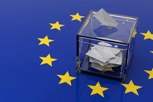 Cử tri Slovakia đi bầu cử Nghị viện châu Âu
