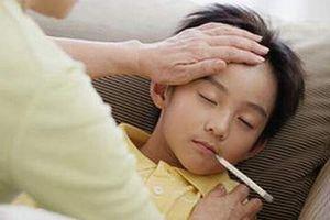 Đề phòng viêm não Nhật Bản vào mùa dịch