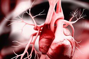 Chế độ ăn Dash ngăn suy tim