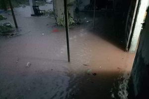 Mưa lớn tại Móng Cái, Quảng Ninh: Một người mất tích do lũ cuốn trôi